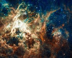 Space Image: Hubble telescope view of the Star-forming region 30 Doradus, Tarantula Nebula. It resides 170 000 light-years away in the Large Magellanic Cloud, a small, satellite galaxy of our Milky Way. Carefully enhanced picture (with a special artistic treatment), looks like a realistic painting, the colors are more vivid and vibrant than in the original photo. Looks amazing as large print or poster, bring the universe in your home or office! Image credit for the original picture: NASA…
