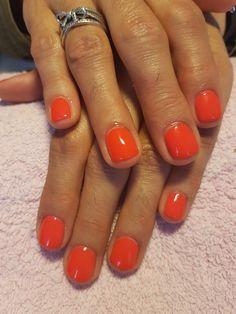 Verniz de gel vermelho. Red nails My Nails, Beauty, Rouge, Finger Nails, Beauty Illustration