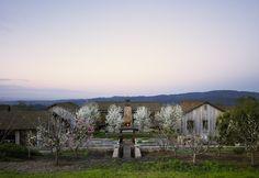 Amazing modern barn home.  Backen, Gillam & Kroeger Architects - Portfolio - Residences - Napa Valley Residence