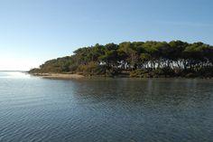 L'isola dei conigli a Porto Cesareo: una meraviglia del nostro Salento