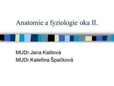 Anatomie a fyziologie oka II. MUDr.Jana Kalitová MUDr.Kateřina Špačková.