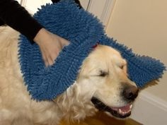 Soggy Doggy - Super Shammy Dog Towel: Treat your dog to a massage while drying her down! #Dog_Towel