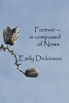 """Forever – is composed of Nows."" – Emily Dickinson – On Southwest image by Florence McGinn -- Explore tips and quotes on writing inspiration at http://www.examiner.com/article/writing-inspiration-from-water-and-nature-tips-and-quotes"