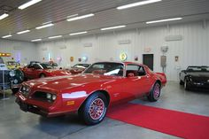 """1978 Pontiac Firebird Esprit """"Red Bird"""" special edition. As the 1977 Skybird had been a blinding flash of baby blue color, the change to the Redbird for 1978 was jarring. The paint scheme on Redbirds was flashy, far more masculine, and somehow, avoided clashing with itself. The gold trim of the Special Edition Trans Ams was borrowed for a red, red, red, and gold theme."""