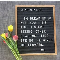 He also gives me allergies. funny letter board quotes sayings for letter boards New Quotes, Happy Quotes, Life Quotes, Inspirational Quotes, Motivational, Word Board, Quote Board, Message Board, Felt Letter Board
