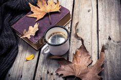 Stock fotó: Régi · könyv · kötött · pulóver · őszi · levelek · kávésbögre · klasszikus