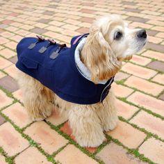 http://www.coccola.co.kr/ 귀엽고 시크한 강아지옷 코콜라 CoCCoLa 입니다.  코콜라 클래식 울 더플코트 네이비