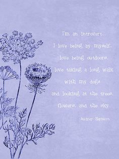 I'm an introvert. I love being by myself, love being outdoors, love taking a long walk with my dogs and looking at the trees, flowers, and the sky ~ Audrey Hepburn (I could have written this)
