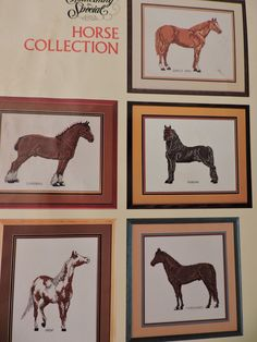Arabian Clydesdale Morgan Tennessee Walker Quarter Horses 8 Cross Stitch Design Charts Needlepoint Designs Collection Chart Book No 90036 Andalusian Horse, Friesian Horse, Arabian Horses, Palomino, Cross Stitch Charts, Cross Stitch Designs, American Saddlebred, Wool Thread, Needlepoint Designs