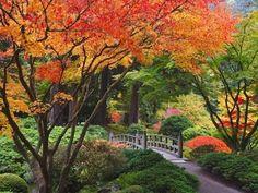 Fall colors at Portland Japanese Gardens, Portland Oregon Fotografie-Druck von Craig Tuttle bei AllPosters.de