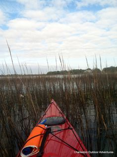 Best spot in the house.  Looking out over the estuary from a kayak. Come on a kayak tour with Charleston Outdoor Adventures!  #FollyBeach #COA #KayakTours #KayakTour #KayakRental #PaddleBoard #PaddleBoardTours #PaddleBoardRentals #SUPtours #DolphinTours #Charleston #DolphinWatching #FollyBeach #strandfeeding #PaddleBoards #KayakRental #KayakTour #PaddleBoardTour #PaddleBoardRental #Ecotours #Dolphin #tour #kayaking #Charleston #SC #SouthCarolina #BowensIsland #Sunset #estuary #boat #rent