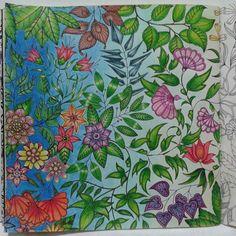 By Juliana Bernal Jardim Secreto - Johanna Basford Secret Garden