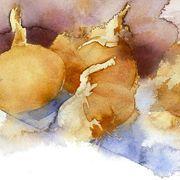 KO.94 spanish onions