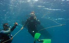 Sport en famille en Guadeloupe » Les Chroniques du Club Med