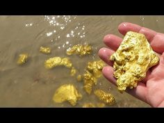 Do you know that there is a lot of gold around us? You should see it and collect. Panning For Gold, Coins Worth Money, Gold Prospecting, Coin Worth, Gold Money, Metal Detecting, Pictures Of The Week, Recycled Crafts, Rocks And Minerals