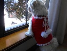 GIGET'S Dog SANTA SWEATER AND HAT Free Crochet Pattern