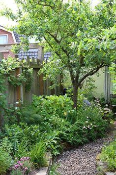 Voedselbos in je stadstuin – Stadstuinieren Cottage Garden Design, Love Garden, Shade Garden, Dream Garden, Back Gardens, Outdoor Gardens, Permaculture Design, Forest Garden, Garden Gates