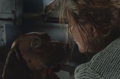 Die Wand (2012) | Film-Szenenbild