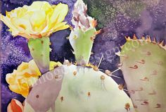 """Opuntia 22"""" x 30""""    full sheet watercolor Prints also available"""