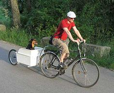 .Dog trailer. #dog