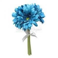 turquoise gerbera daisies - Google Search