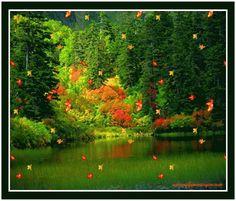 Centerblog.net l'automne+femme+papillion+gif | Publié à 16:37 par chezmanima