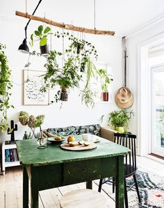 Herbs in upcycled cans hung from a branch suspended from the ceiling over a forest green table