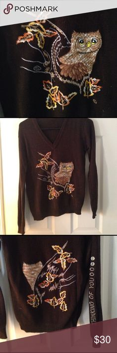 """Vintage owl sweater Adorable embroidered 🦉 owl! Details on front, back and sleeve. No tags inside but it fits me like a small, and I'm 5'6"""", 34b. V-neck, and the fabric feels like polyester. Vintage Sweaters V-Necks"""
