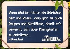 Wilhelm Busch Zitat Timeline Photos, Letter Board, Poems, Shabby, Lettering, Quotes, Poster, Tongue Twisters, Lyric Poetry