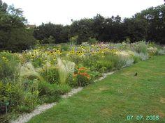 Gartenblick Bilder Sonstiges Landschaftmotiv Sichtungsgarten Hermannshof
