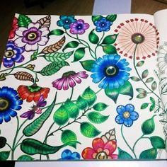 Livros de colorir para adultos: relaxe e mostre seu talento