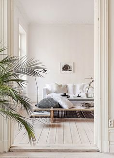 Neutral palette, daybed + palm