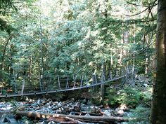 The metal suspension bridge that crosses Norvan Creek
