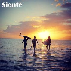 Mi Playas Ecuador playasdecuador.com Beach Bum, Summer Beach, Summer Of Love, Summer Fun, Summer Vibes, Beach Girls, Learn To Surf, Surfer Girls, Sunset Surf