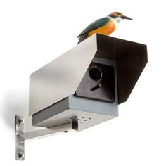 Haha this is a birdhouse! Should totally buy for the SK house for a fake surveillance. Placed high enough no one would be able to tell :)