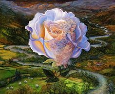 Adrift - High above a typical English landscape, a magical rose traces the course of a winding river, carrying a beautiful Angel of Peace within the folds of its pure white petals. As she looks down upon the tranquil scene below she hopes that one day soon she will observe the same peacefulness across the world. ~Josephine Wall