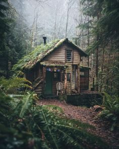Tag who you'd stay with 🏡 Surrounded by nature in this enchanting cottage 🍃 Olympic National Park, Washington, U. Cottage In The Woods, Cabins In The Woods, House In The Woods, Destination Voyage, Forest House, Forest Cottage, Forest Cabin, Cozy Cottage, Cabins And Cottages