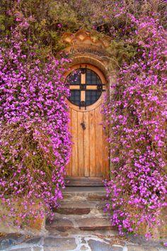 Lantana montevidensis scrambling around a doorway in Bormes-les-Mimosas, a village in Provence Alpes Côte d'Azur, France Cool Doors, Unique Doors, Portal, Door Knockers, Door Decs, Closed Doors, Doorway, Belle Photo, Windows And Doors
