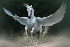 Image from http://www.wallpaperpics.net/wp-content/uploads/2013/04/Pegasus-Horse-Wings.jpg.