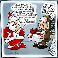 Schrödingers Weihnacht