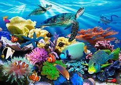 Reef Life Mural - Howard Robinson| Murals Your Way