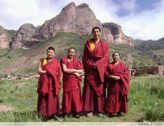 tall-tibetan
