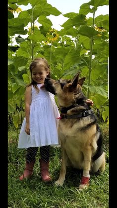 Whoever said diamonds are a girl's best friend never had a dog. #GSD #TheAdventuresofRiley #InspiringTails