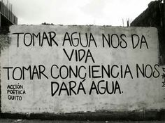 Tomat agua nos da vida. Climate Change Quotes, Bien Dit, Little Bit, Love Phrases, More Than Words, Spanish Quotes, Ecology, Positive Vibes, Wise Words