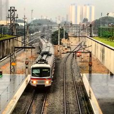 #morning #rain #winter #train #station #railroad #urban #perspective #angles #instasky #instarain #instasampa #igers #iphonesia #splovers #barrafunda #sampacity #saopaulo #sp #brazil by jamesloppes