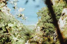 Harold Porter Gardens Pictures, Gardens, Life, Photos, Outdoor Gardens, Grimm, Garden, House Gardens