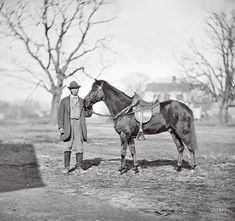 """March 1865. """"City Point, Virginia. 'Jeff Davis,' General Grant's pony."""" You can't say Ulysses S. Grant lacked a sense of humor. Wet plate negative"""