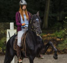 Cute Horses, Horse Love, Dark Horse, Beautiful Horses, Riding Stables, Horse Riding, Animals And Pets, Cute Animals, Horse Girl Photography