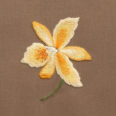 Orchid Eleanora<br>Hand Towel - Khaki Cotton