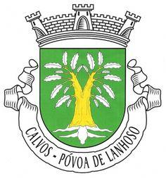 …Presidente da Junta de Freguesia de Calvos, do Município da Póvoa de Lanhoso:  Torna pública a ordenação heráldica do brasão, bandeira e selo da Freguesia de Calvos, do Município da Póvoa de Lanhoso, tendo em conta o parecer emitido em 19 de Outubro de 2010, pela Comissão de Heráldica da Associação dos Arqueólogos Portugueses, e que foi estabelecido, nos termos da alínea q), do nº 2 do artº. 17º do Decreto Lei nº 169/99 de 18 de Setembro, sob proposta desta Junta de Freguesia… (cont.1)